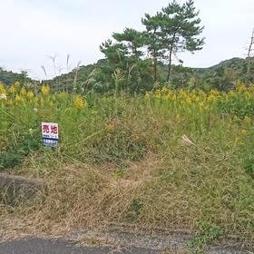 臼杵市(U-3)