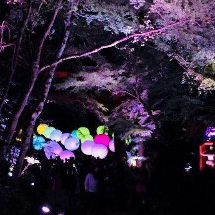 光の祭り☆
